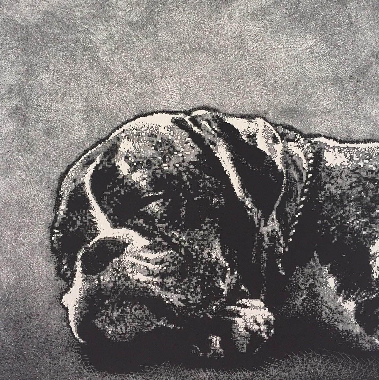 Dog Tired     Ed.52/100     44 x 43 cm     UNFRAMED