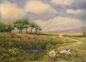 Abbotsbury    Pastel    25 x 34 cm     (framed size 45 x 55 cm) White frame.  Dark green mount