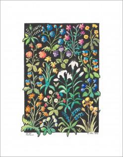 Flowers III     Watercolour     23 x 17 cm    (Unframed) Off-white mount