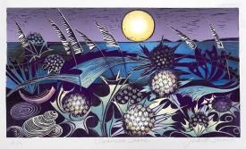 Judith Stroud