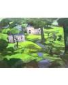 'Dyfed Countryside'