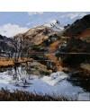Llyn Gwynant 40x40cm.£545 oil on canvas